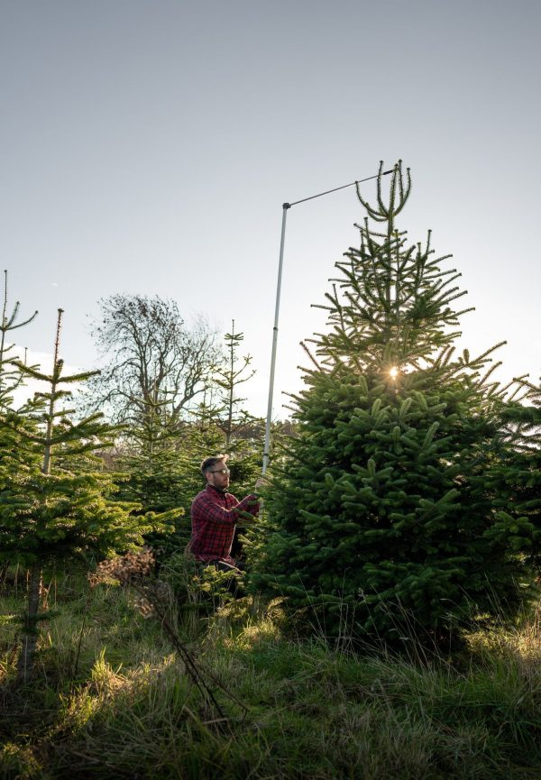 14 ft commerical christmas tree for sale