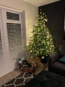 northumberland newcastle christmas trees for sale
